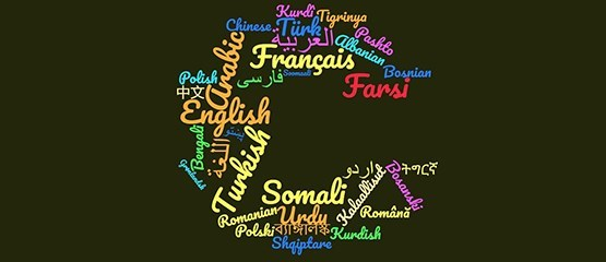 wordcloud languages